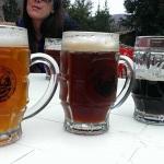 Primer Festival de la Cerveza Artesanal ¡Salud!