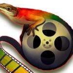 """CINE: Cancelan el 12 Festival Internacional de Cine """"FENACO"""""""