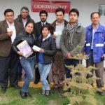 Odebrecht financió premios del Ministerio de Cultura